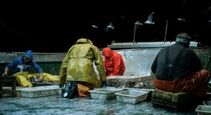 pescatori-di-corpi2