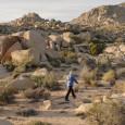 Ed Ruscha, artista di fama mondiale, è l'autore di una scultura di singolare natura: una fedele riproduzione di una roccia di medie dimensioni (Rocky II), nascosta dallo stesso artista da […]