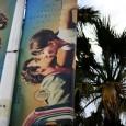 Conclusa con la Palma d'oro a Shopliftersche consacra il giapponese Kore-Eda Hirokazu(vedi speciale premiazione), l'edizione 71 del Festival di Cannes suggerisce alcune riflessioni.Dal 1997, da L'anguilladi Shoei Imamura, il Giappone […]