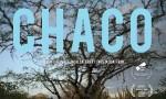 Quell'angolo di terra Chaco di Daniele Incalcaterra e Fausta Quattrini, che ha chiuso Filmmaker Festival 2018, è il seguito dell'incredibile storia personale del regista già raccontata nel suo precedente film, […]