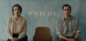 wildelife