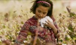 A First Farewell, vincitore al Festival Internazionale del Cinema di Tokyo, è ambientato nella profonda Cina nord-occidentale, sul suggestivo sfondo di un villaggio circondato da campi di cotone e deserto. […]